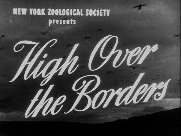 High Over The Borders