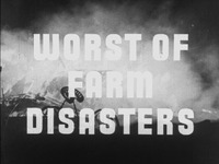 Worst of Farm Disasters