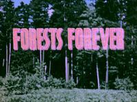 Forests_Forever.jpg