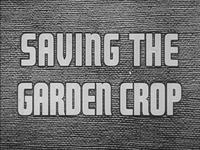 Saving the Garden Crop