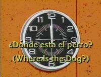 Donde esta el perro?