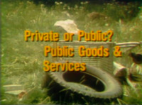 Private or Public?: Public Goods and Services
