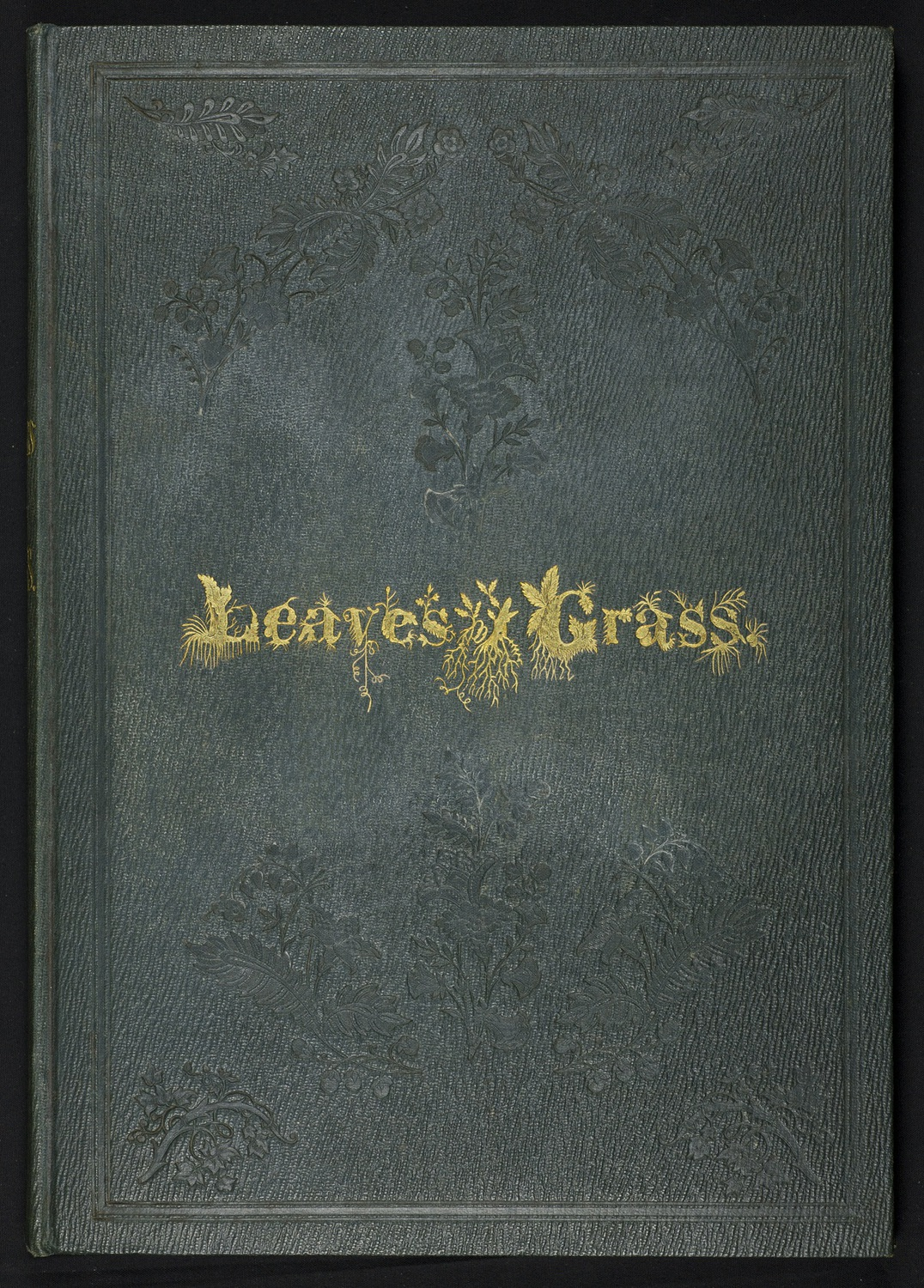 Leaves 1855 cover