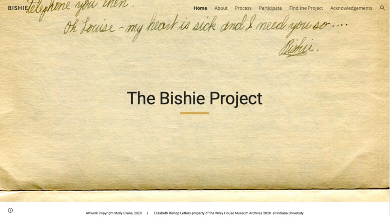 The Bishie Project
